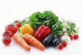 кроссворд овощи скачать